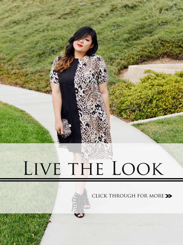 Curvy Girl Chic Plus Size Fashion Blog Live the Look Two Tone Dress