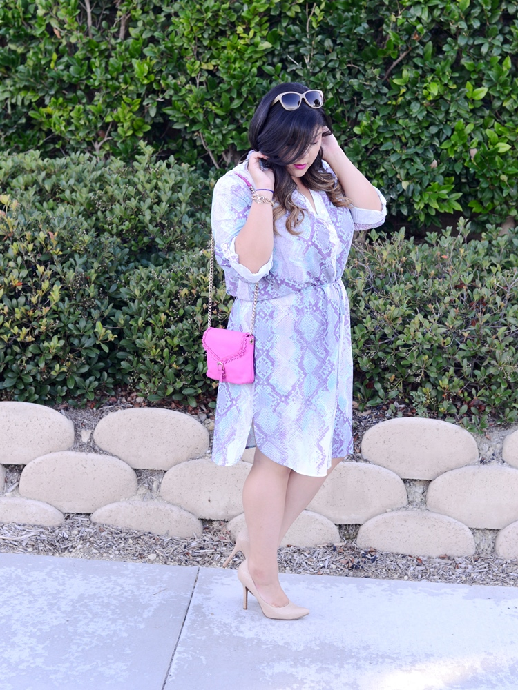 Curvy Girl Chic Plus Size Fashion Blog MYNT1792 Shirt Dress